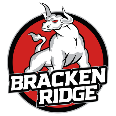Bracken Ridge Bulls Netball